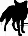 Parkwolf